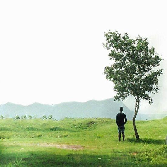 . Thetree Thisismymuse Thephotosociety Thesimilarthree subjectsinmysquare _soi _oye nature mysimpleclick jj india_gram ohmyindia partofmyfeed mobilephotography jamshedpur
