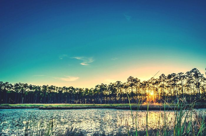 Big Branch Marsh, Louisiana. Louisiana Sunsets Sky Sunsets Nature_collection Water Reflections Water_collection EyeEm Nature Lover EyeEm Gallery Pastel Power Water Landscape Sunlight Reflection Swamp Sky Blue Sky Trees