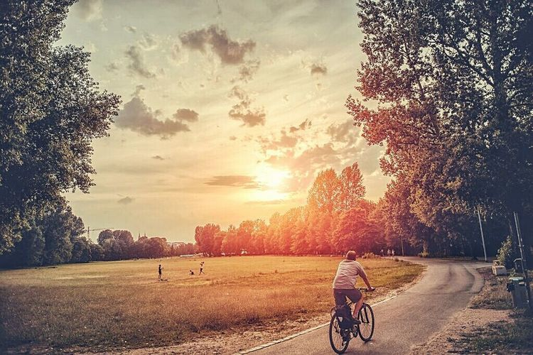 Bicycle by trees against sky during sunset