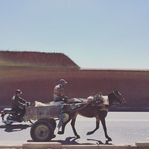Horse cart near