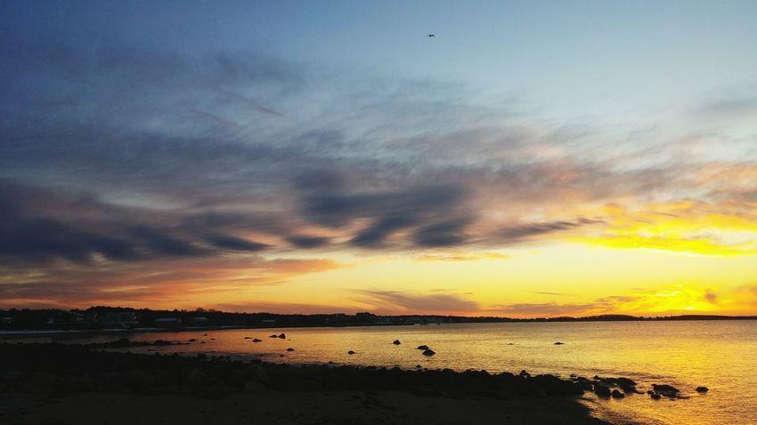 Sunrise Coastal Neds Point Mattapoisett