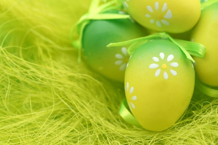 Green easter eggs Happy Easter Easter Background Vibrant Nobody Easter Card Copy Space Green Easter Green Color Celebration Plant Grass Easter Egg Holiday Close-up Yellow No People Egg Holiday - Event Decoration Focus On Foreground