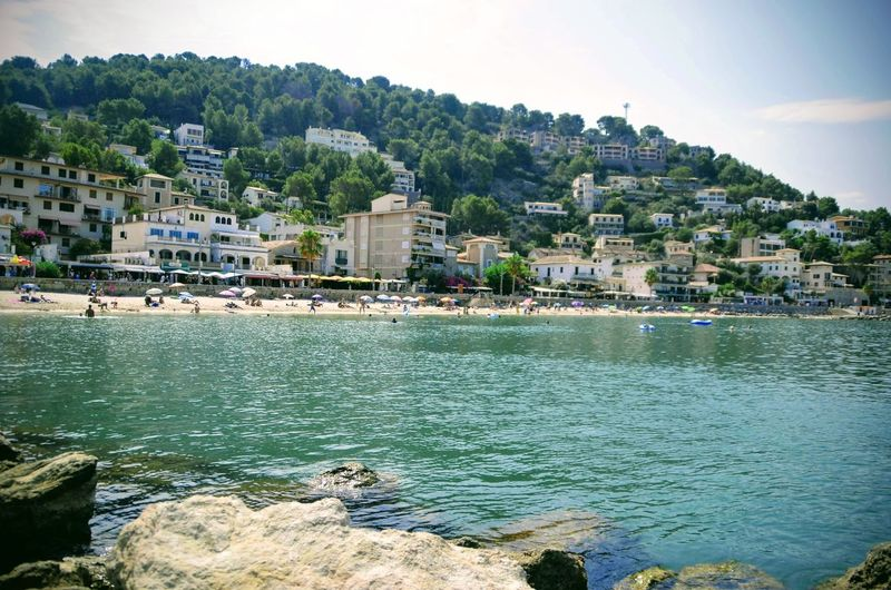 Port de Sóller Cityscape Water City Sea Tree Beach Palm Tree Point Of View Town Residential Building Marina TOWNSCAPE Harbor Coastal Feature