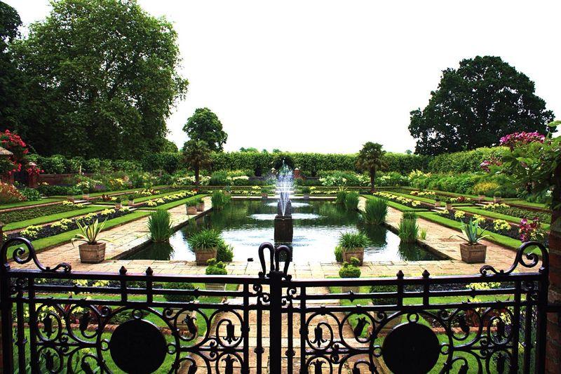 Kensington Gardens Garden Fountain Symmetrical Serenity Royal Garden Kensington Palace Kensington LONDON❤ London Trip Tourist Spot Tourist Attraction  English Garden