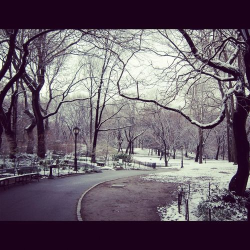 NY snow Central