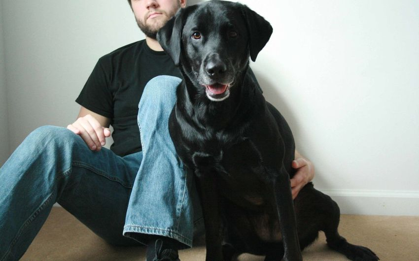 Midsection Of Man Sitting With Dog
