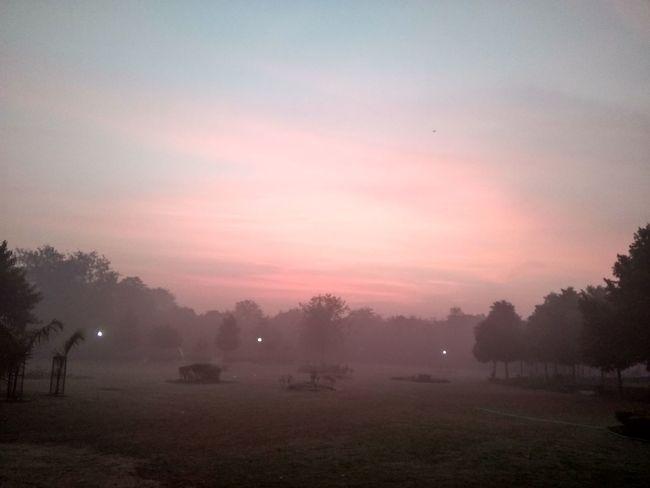 Breathing Space Yudhvir Morning Fog Landscape Scenics Nature The Week On EyeEm