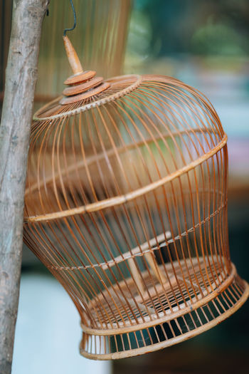 Close-up of cage on wood