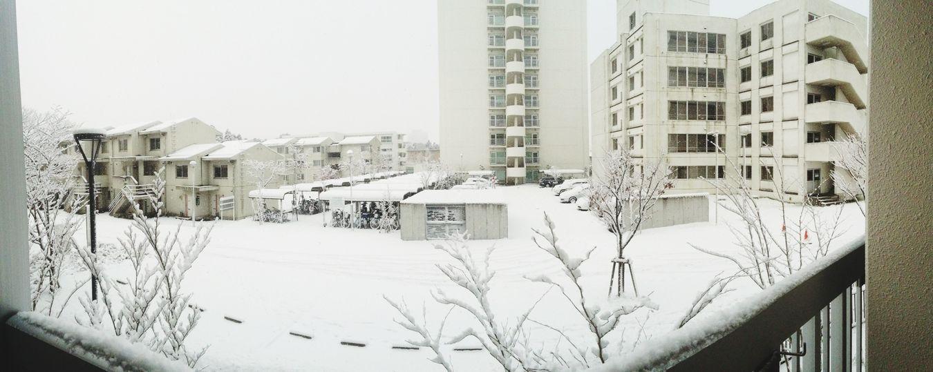 Snow Amazing View Hello World