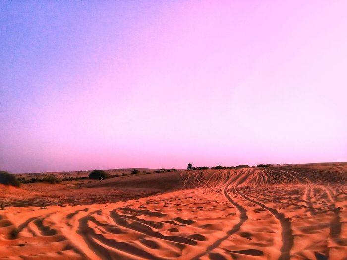 Sunset Desert At Jaisalmar,India Jaisalmer Sunset Point Sand Dunes Thar Maru Bhumi Landscape Outdoors Travel Destinations Sanddunes No People Beauty In Nature Deserts Around The World Landscapes