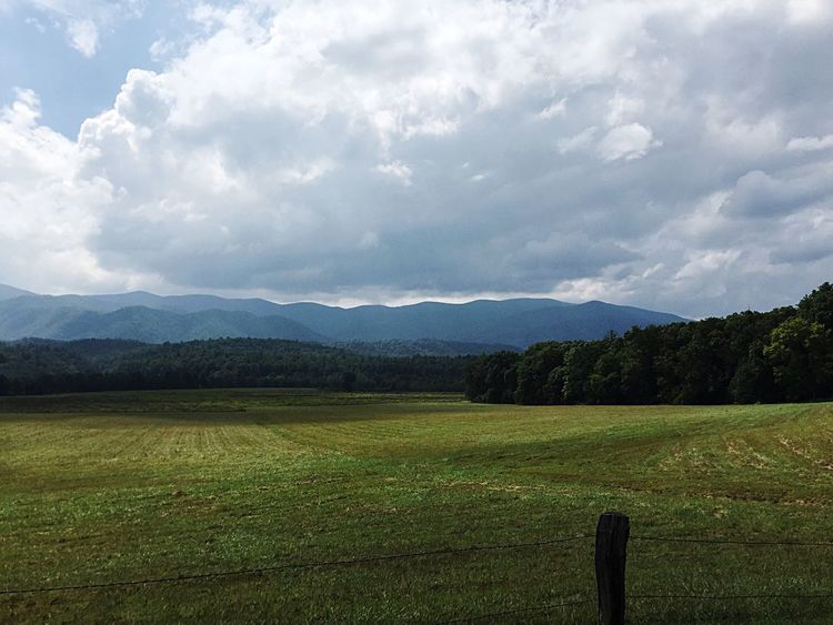 Nature Landscape Tranquility Beauty In Nature Field Tranquil Scene Scenics Sky Mountain Rural Scene Agriculture No People Growth Outdoors Cloud - Sky Grass Day Tennessee Cades Cove