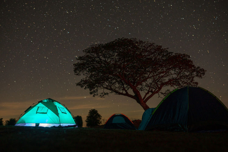 Tent and trees on field against sky at night