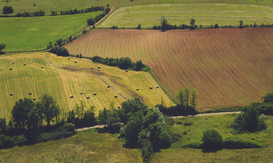 Aerial view of a field and a meadow with hay bales in late spring France Agriculture Beauty In Nature Day Farm Field Grass Green Color Landscape Nature No People Occitanie Outdoors Patchwork Landscape Rural Scene Scenics Tranquil Scene Tranquility Tree