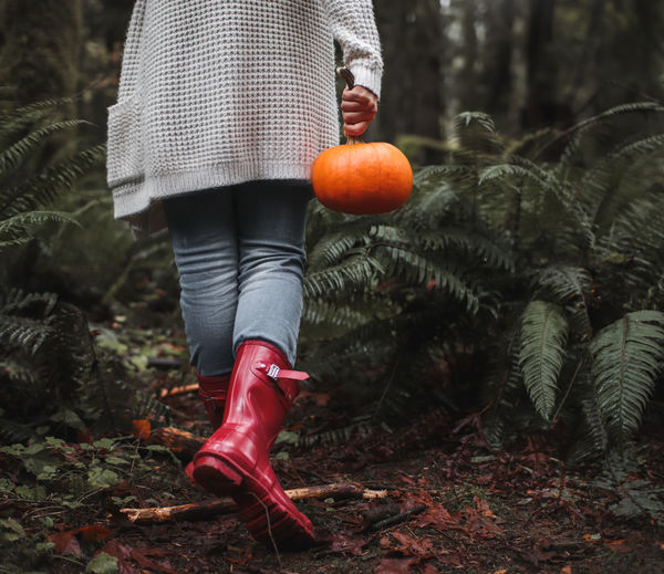 Low section of woman holding pumpkin walking in forest