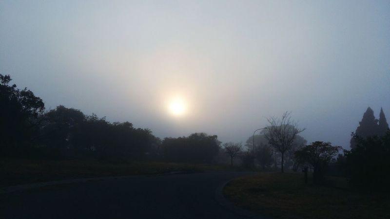Misty Morning Misty Sunrise New Day Good Morning!