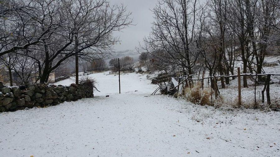 Snow Cool Naturel First Eyeem Photo Doğa