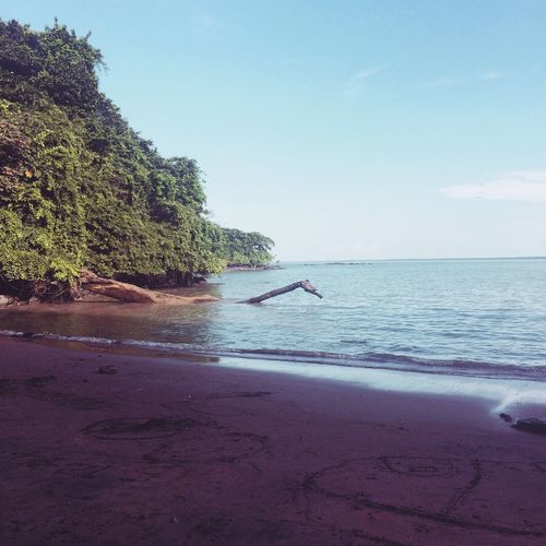 Guyane, walking on a quiet beach Guyana Beach Photography Beautiful Nature Quiet Beach