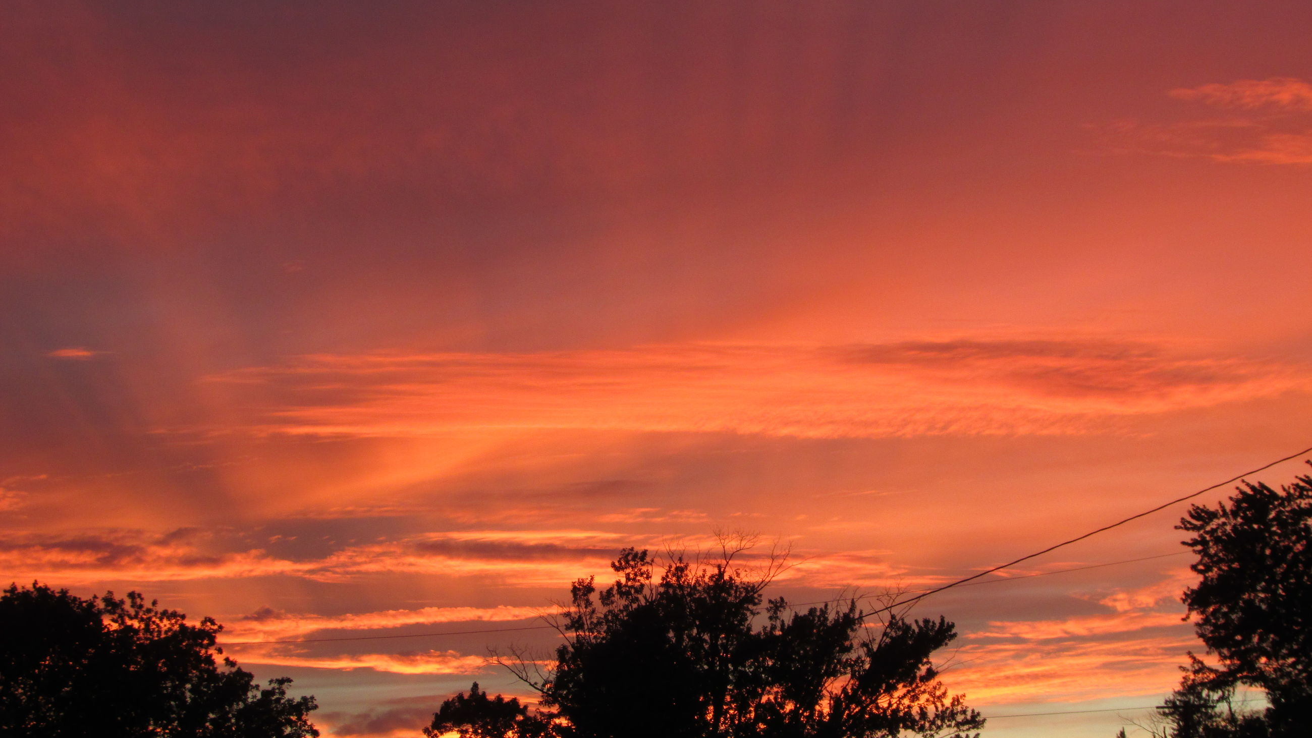 sunset, low angle view, silhouette, tree, sky, orange color, beauty in nature, scenics, tranquility, cloud - sky, nature, tranquil scene, dramatic sky, idyllic, cloud, high section, no people, outdoors, cloudy, growth