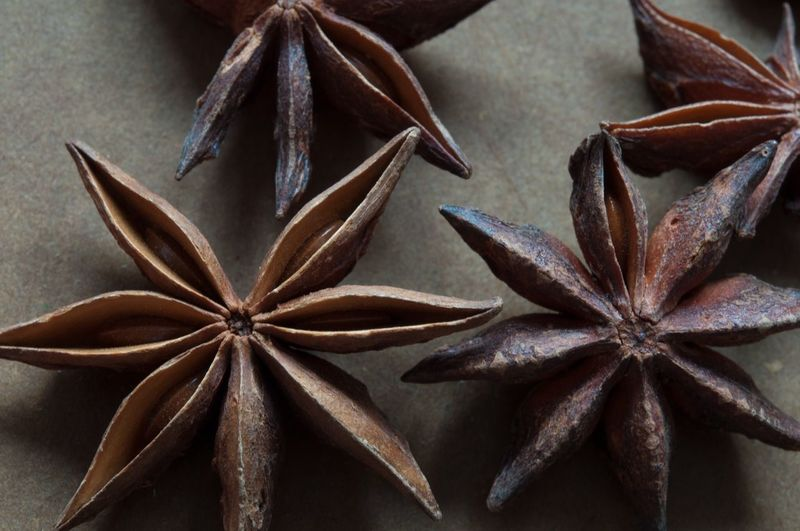 Star Anise , Food Spice Nature's Diversities