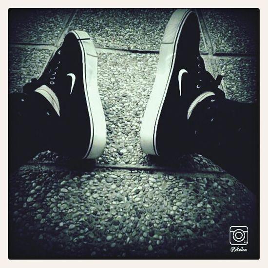 Newshoes Nikesb Skateboarding