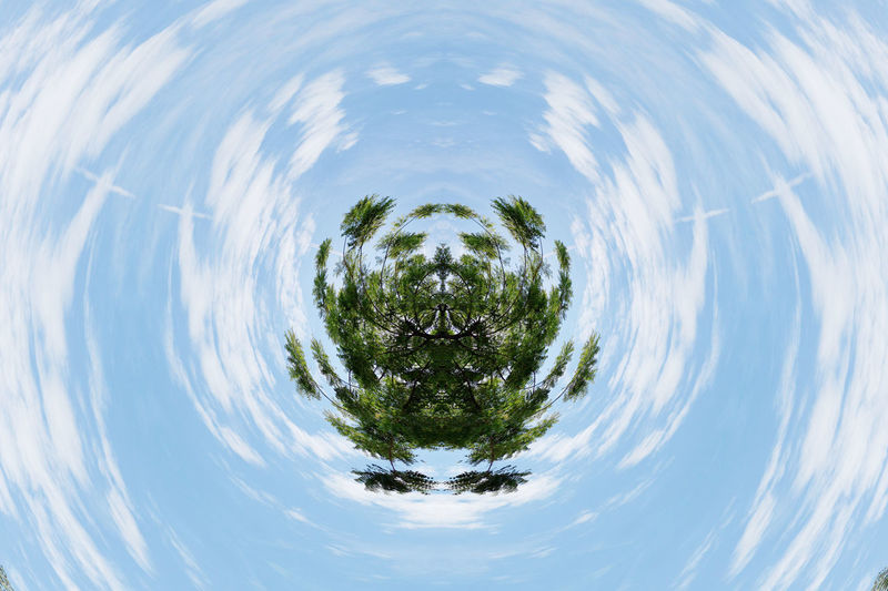 Digital composite image of trees against sky