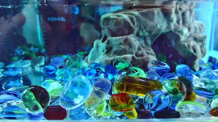 Multi Colored No People Indoors  Aquarium Glass Stones Water No Filter Close-up Day