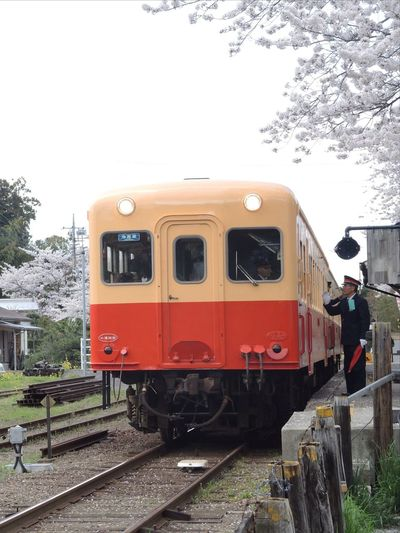 Local Railway 小湊鉄道 さくら Nikon P7700