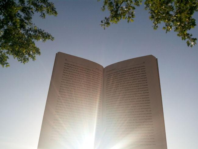 Wisdom shines. Book Bookworm Books ♥ Shine Rays Of Light Rays Of Sunshine Ray Of Light Rays Of The Sun Sky Relaxing Enjoying Life Blue Sky Tree Simple Moment Light Magical Magic