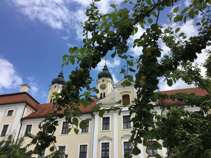 Apple-picking soon! Architecture Building Exterior Tree Plant Built Structure Low Angle View Building