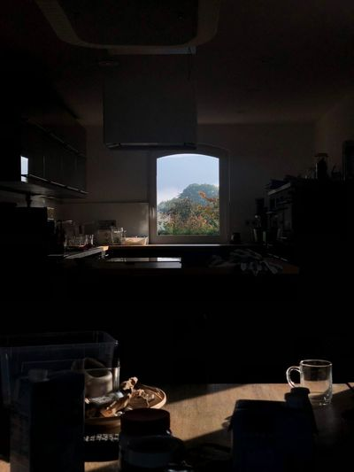 the look forward The Look Forward Table Indoors  Food And Drink No People Drink Window Home Interior Freshness Nature Domestic Room A New Perspective On Life