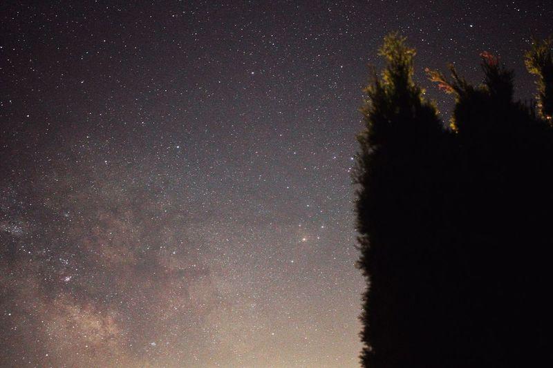 Antares Star -