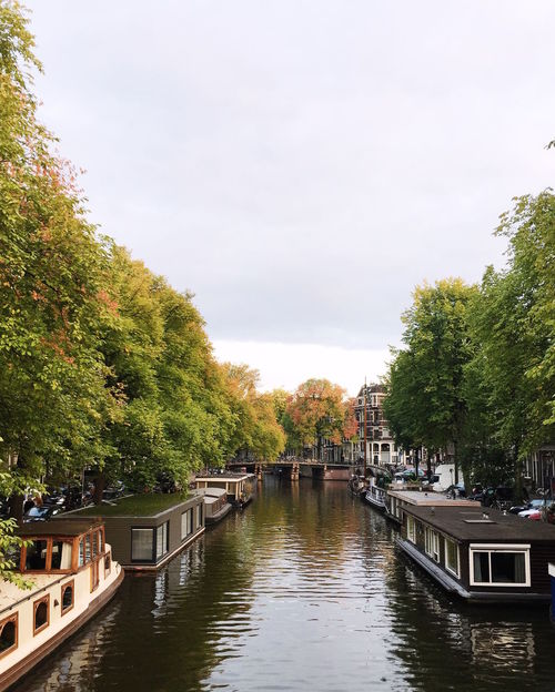 Amsterdam Amsterdam Canal Amsterdamcity Amsterdamse Grachten Architecture Autumn Autumn Colors Autumn Leaves Beauty In Nature Canals Canals And Waterways City City Life Cityscape Cityscapes Day Houseboat Houseboats In Amsterdam Outdoors Sky Tourboat Water