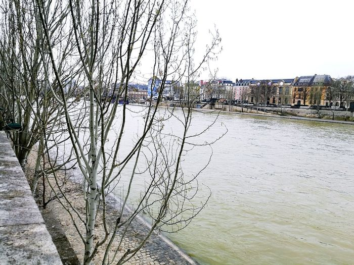 The Seine river France France 🇫🇷 River Seine Trees Cold Cold Temperature Background Houses House Background Water Bridge Wind Chill