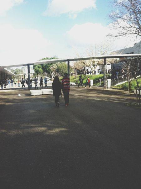 School ew