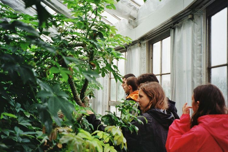 Living Garden AI Now EyeEm Nature Lover EyeEm Selects Garden Architecture People Together Friends Interrail Naturelovers Growth Togetherness Mature Adult Plant Adult People Men Indoors  Real People Tree Bonding Greenhouse