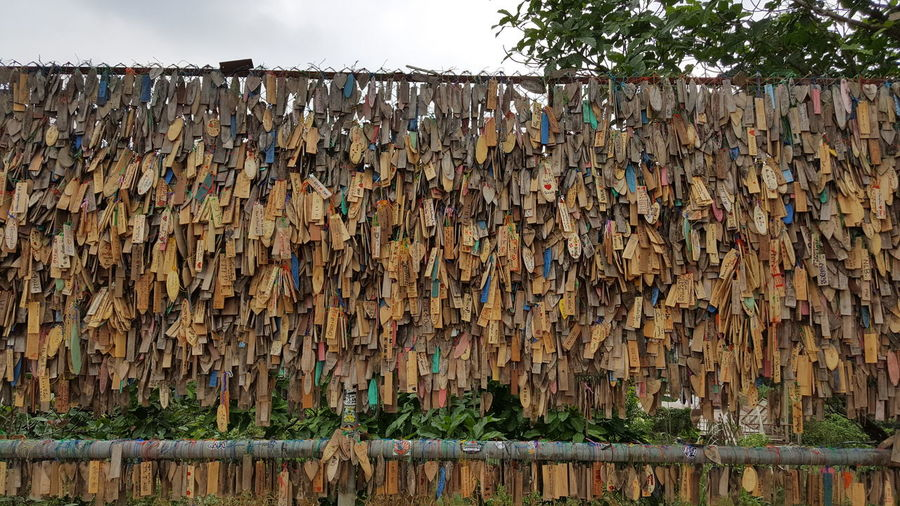 Abundance No People Tree Nature Large Group Of Objects Metal Built Structure Day Architecture Sky Outdoors Plant Wood - Material Stack Wall - Building Feature Rusty Barrier Boundary Heap Fence