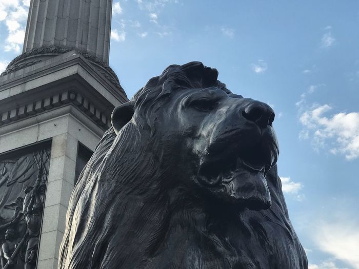 Buckingham Lion Statue LONDON❤ London London Lifestyle London Streets Londononly Statue Travel Travel Photography Traveling Travelling Wanderlust Art And Craft Close-up Clouds Day Londonlife No People Sculpture Sky Statue Statue In The City Statues Statues And Monuments Travel Destinations Travelphotography