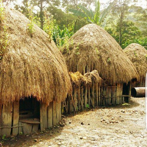 Nature Beauty In Nature Honai Wamena Home House Traditional Traditional House Papua