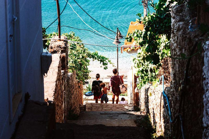 Rear view of people walking on walkway along plants