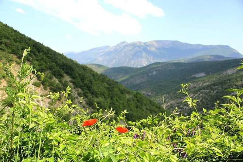 Montagne Cielo Abruzzo Lamajella Lamajellaèsemprelapiùbella Verde Papaveri Due Lulekuqe Male Italia Jeshillek Flowers Green Red