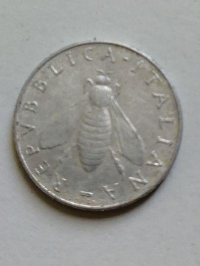 White Background Coin Studio Shot Close-up