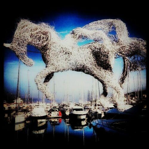 Horse Marine Blue Blue Sky Sea Ship Enjoying Life Sea Life Colorful EyeEm Nature Lover