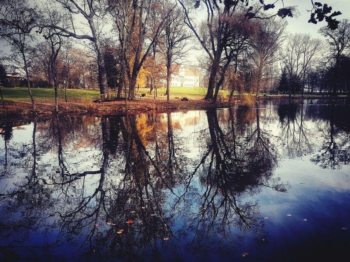 Reflection Water Lake