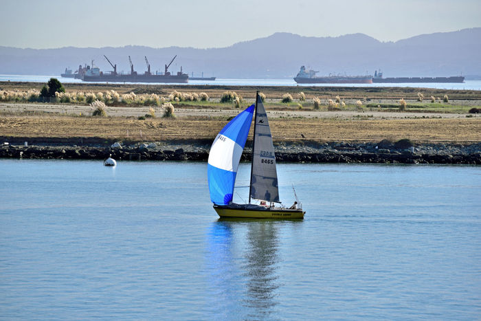 Sailboats At Middle Harbor 7 Middle Harbor Port Of Oakland, Ca Waterfront♥ Sailboat The Color Of Sport Sailing Embarcadero Cove Hills Of San Francisco Background Silhouettes Freighters Across The Bay Alameda Shoreline Scenic View From Observation Tower Watersports Colorful Sails People On Board Enjoying Life Leisure Activity Reflection Reflected Glory Reflections In The Water A Day On The Bay Landscape_Collection