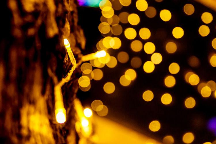 Light Lights