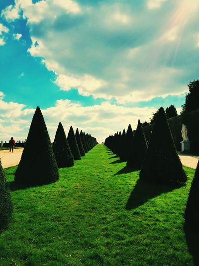 Paris jardin Photography Photo Garden Photography Versailles Paris Garden Architecture Photooftheday