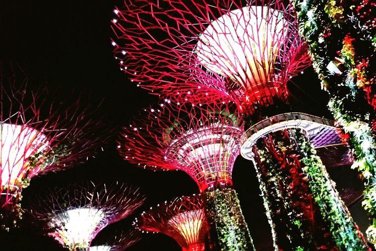 Marina Bay Sands - Singapore Futuristic City NightNight Plantsofthefuture No People