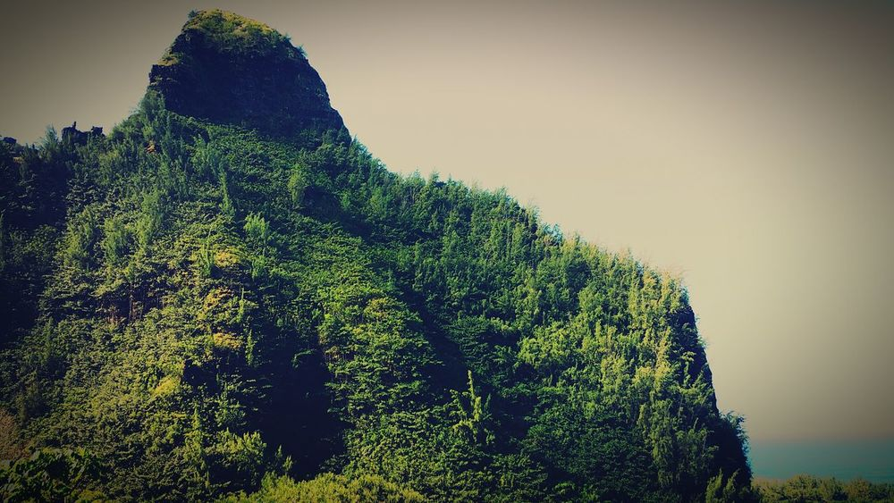 Nature Kauai♡ Open Edit Hawaii Scenery Shots Scenery Mountain Range Mountains And Valleys Mountain View Mountain_collection Mountains And Sky Mountain And Ocean Mountains