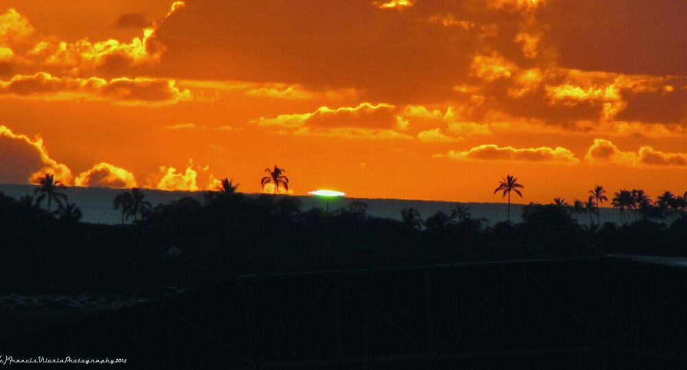 Sunset Silhouettes Ocean View Green Flash Oahu Hawaii