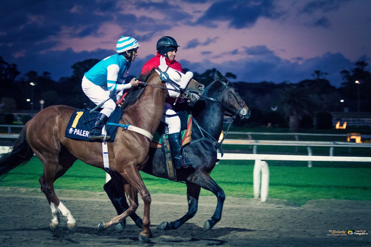 horse, domestic animals, horseback riding, jockey, mammal, riding, outdoors, horse racing, real people, sport, competition, helmet, men, sky, day, one person, adult, people